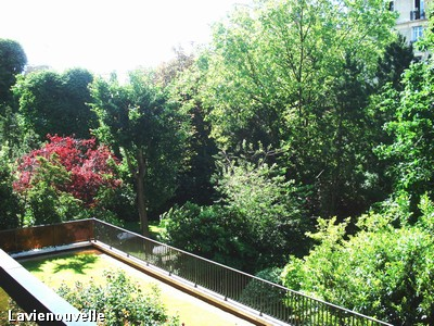 Plein sud sur jardin -